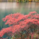 The Autumn in Jiuzhaigou Valley