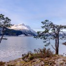 A tiny lighthouse, two trees and a mountain. The fjord Nordfjorden -Norway.