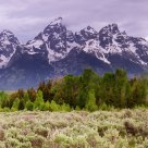 Panorama from Schwabacher Road