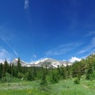 Indian Peaks Meadow