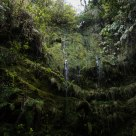 Waterfall on the way of our Levada..
