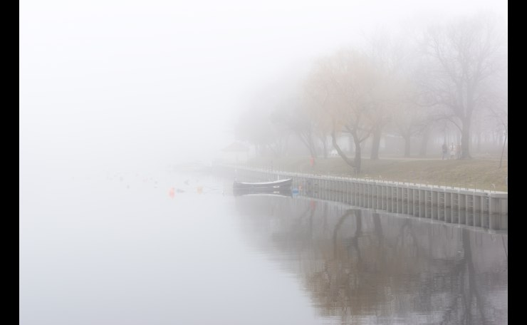 foggy river bank